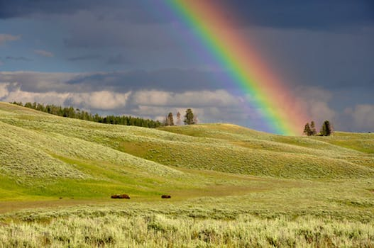 The other side of the rainbow.
